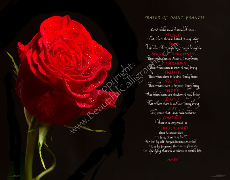 St. Francis of Assisi prayer for peace written in calligraphy with a gorgeous red rose