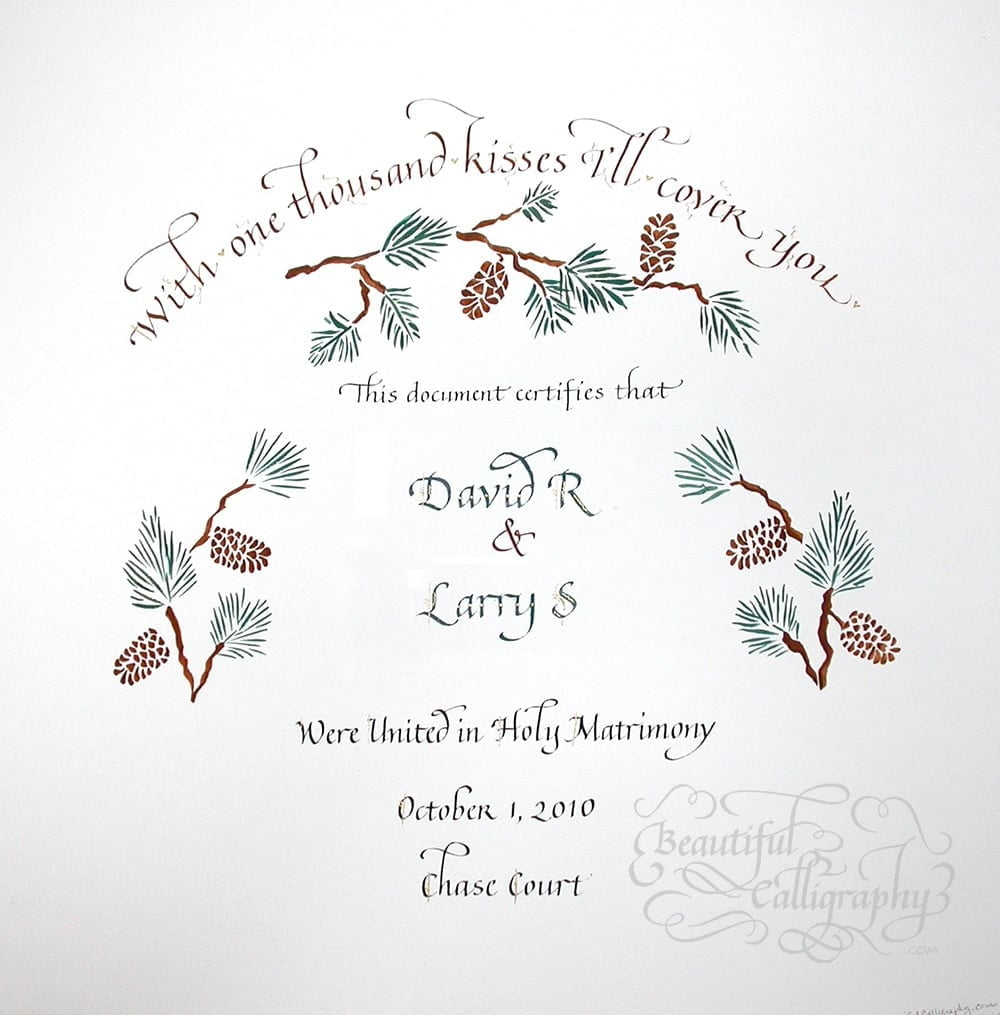 gay marriage certificate of two grooms