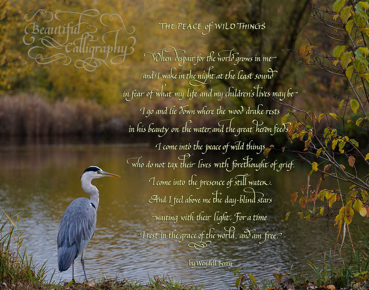 Flourished custom Calligraphy inspirational poem The Peace of Wild Things