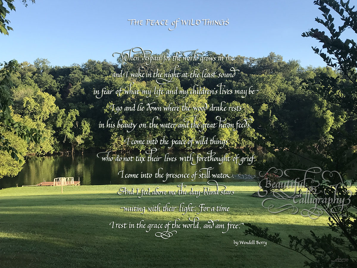 Inspirational poem with custom background, peace of wild things